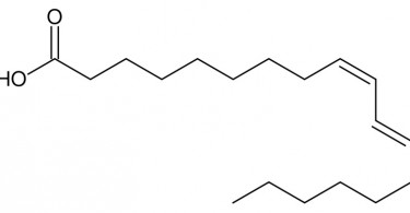 Difference Between Linoleic Acid and Conjugated Linoleic Acid