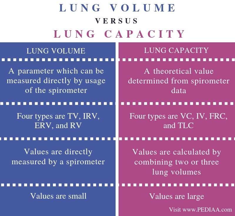 Difference Between Lung Volume and Lung Capacity - Comparison Summary