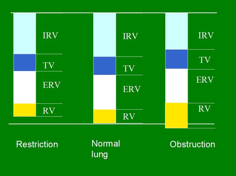 Difference Between Lung Volume and Lung Capacity