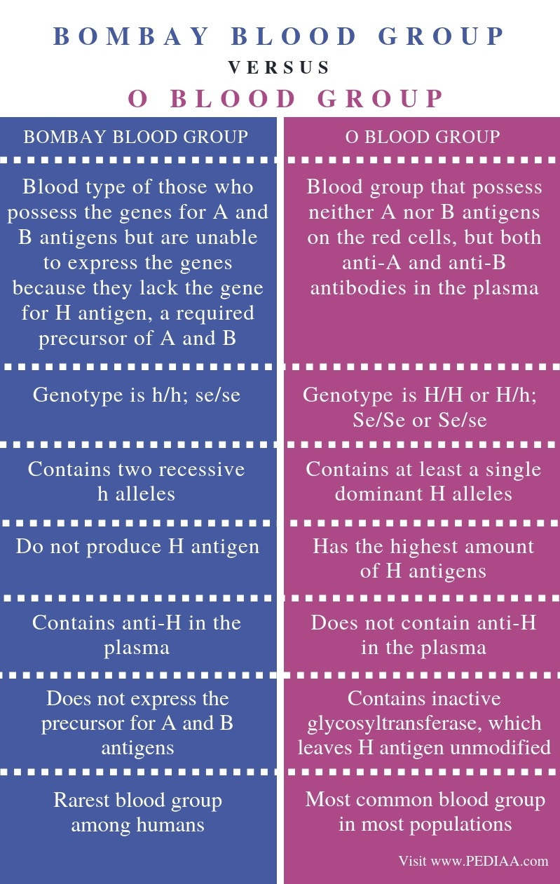 Difference Between Bombay Blood Group and O Blood Group - Comparison Summary