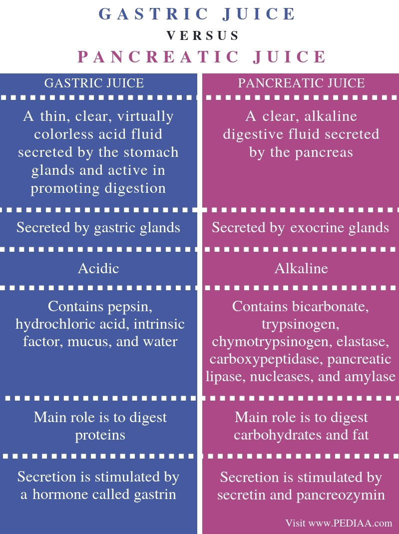 Difference Between Gastric Juice and Pancreatic Juice - Comparison Summary