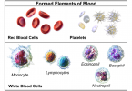 Main Difference - Myeloid and Lymphoid Cells