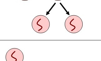 Main Difference - Vertical and Horizontal Gene Transfer