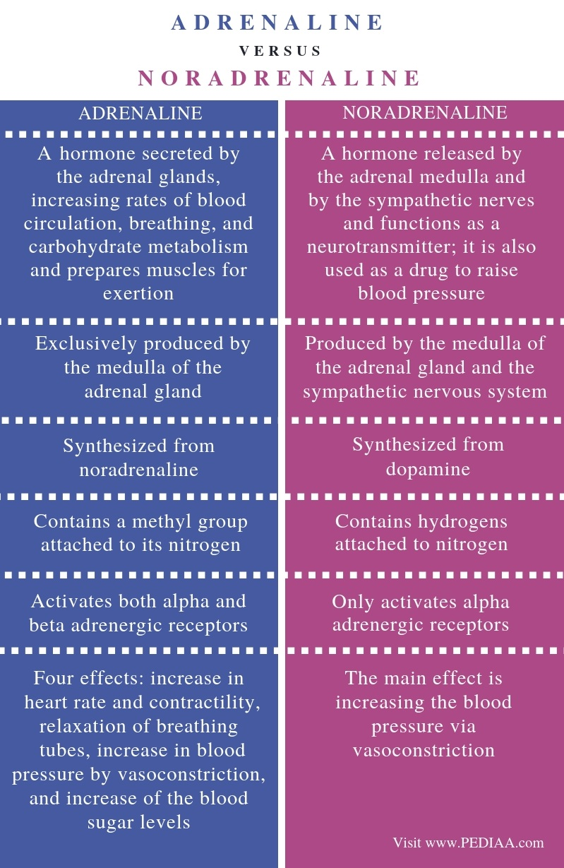 Difference Between Adrenaline and Noradrenaline - Comparison Summary