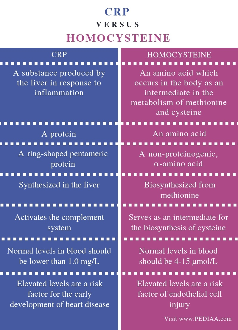 Difference Between CRP and Homocysteine -Comparison Summary