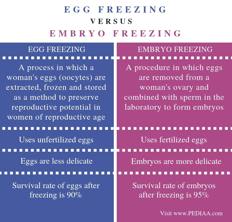 Difference Between Egg Freezing and Embryo Freezing - Comparison Summary