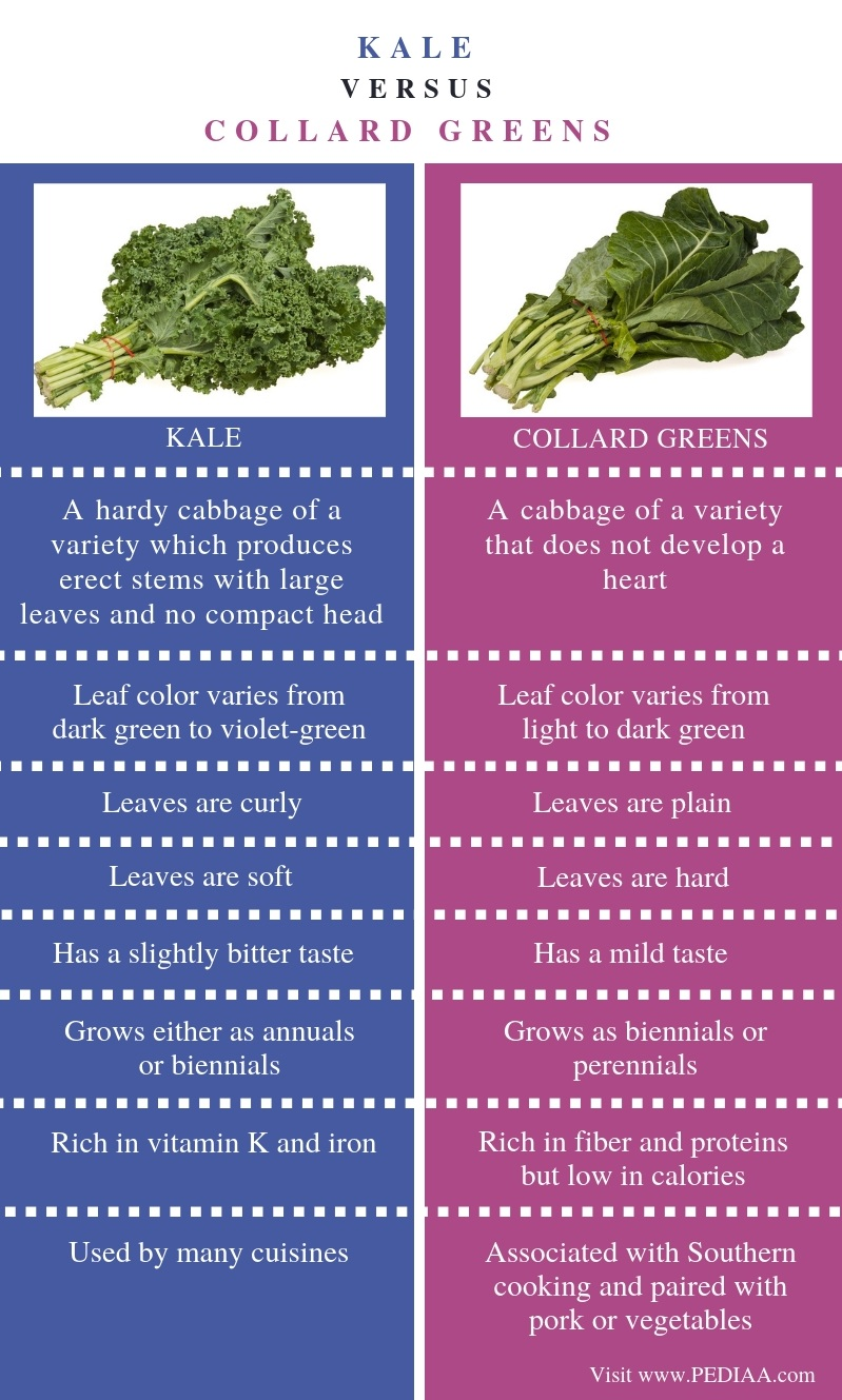 Difference Between Kale and Collard Greens - Comparison Summary