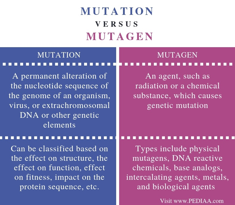 Difference Between Mutation and Mutagen - Comparison Summary