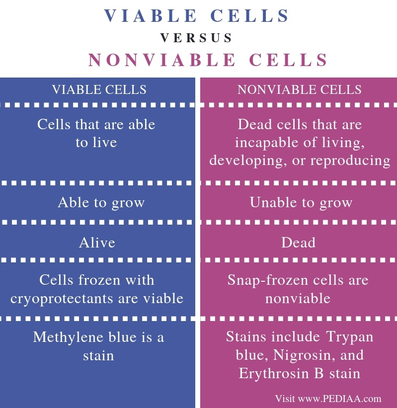 Difference Between Viable and Nonviable Cells - Comparison Summary