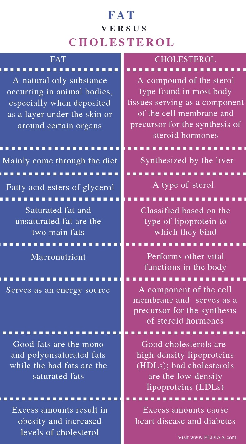 Difference Between Fat and Cholesterol - Comparison Summary