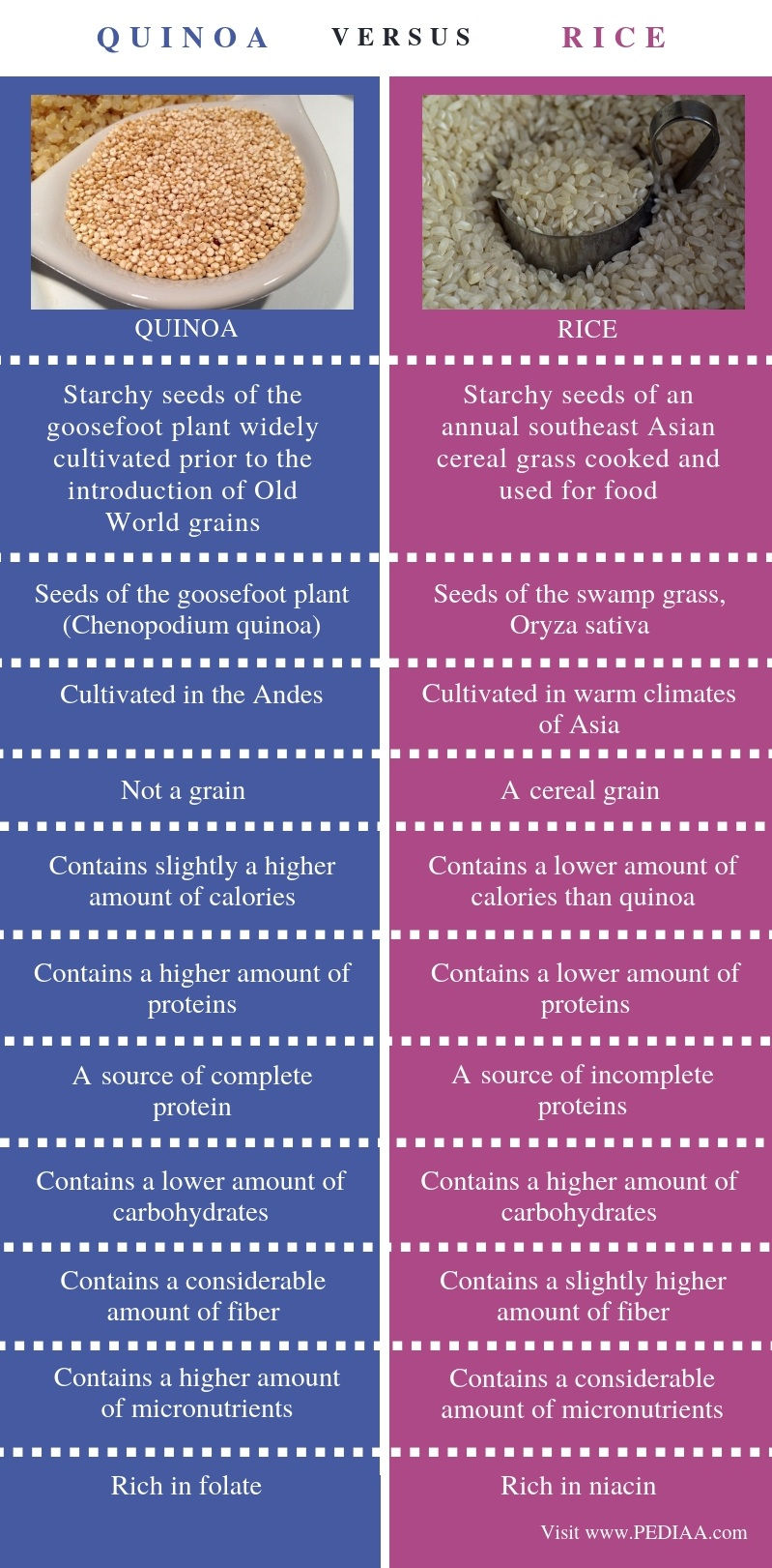 Difference Between Quinoa and Rice - Comparison Summary