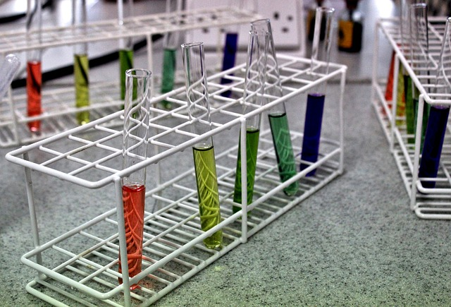 What is the Difference Between Biochemical and Cell Based Assays