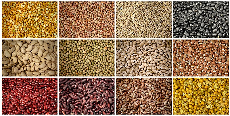 Difference Between Lentils and Pulses