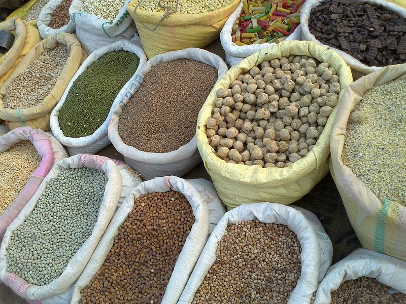 Difference Between Seed and Grain