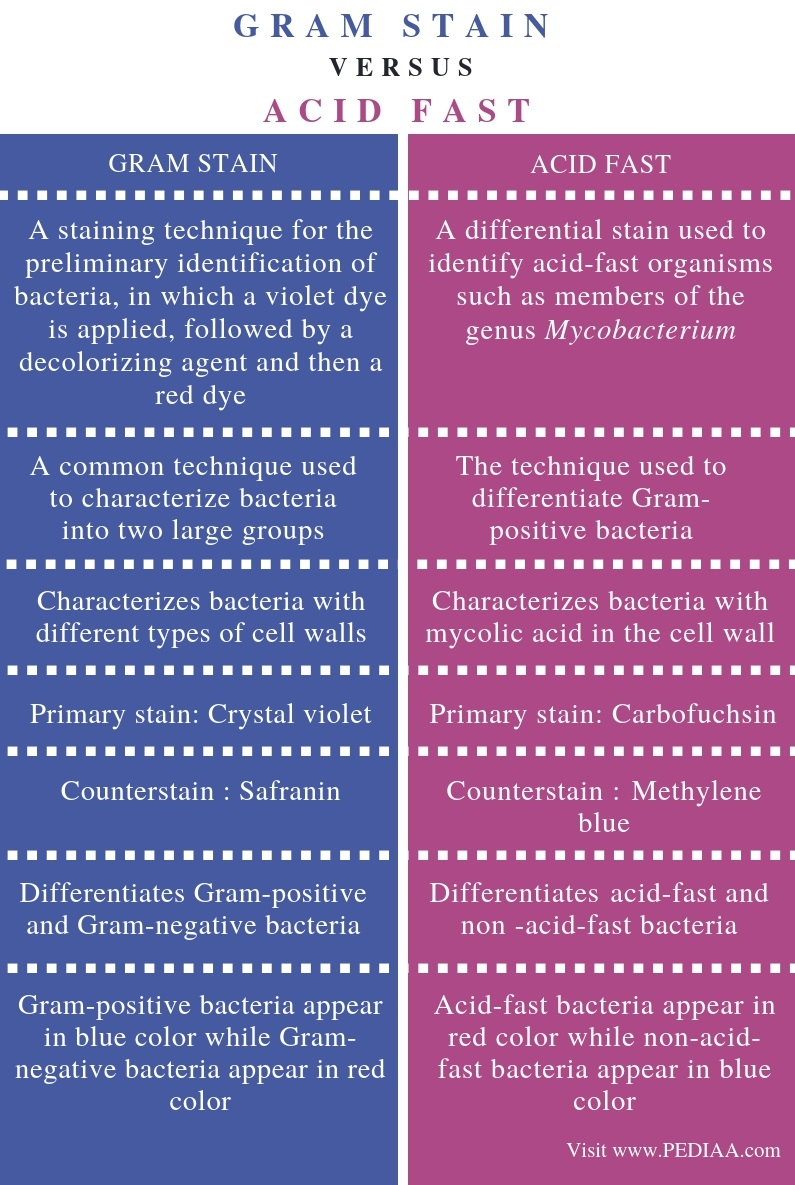 Difference Between Gram Stain and Acid Fast - Comparison Summary