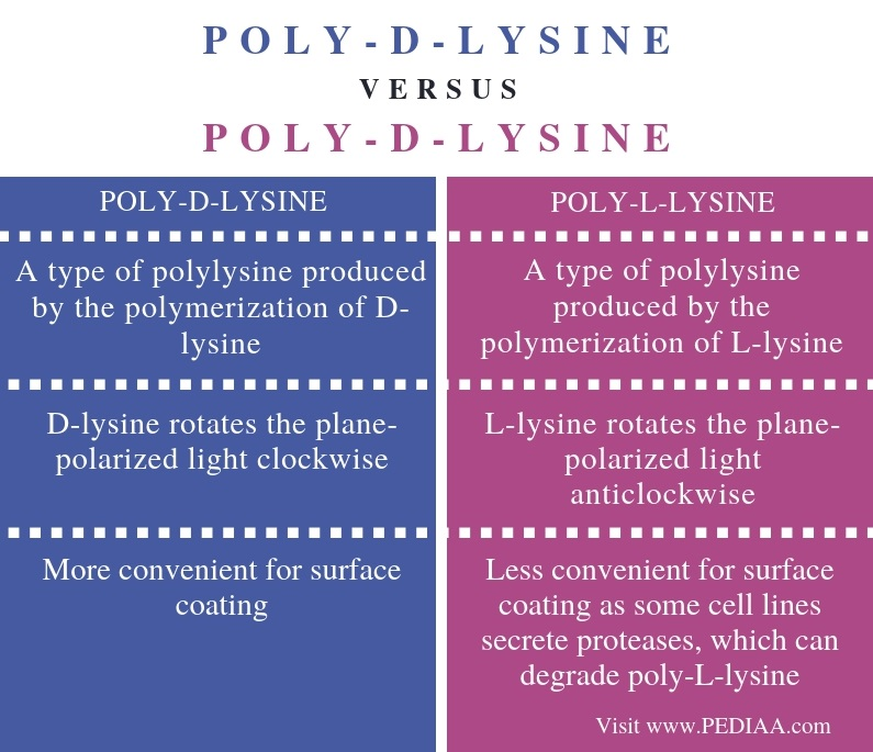 Difference Between Poly D Lysine Poly L Lysine - Comparison Summary