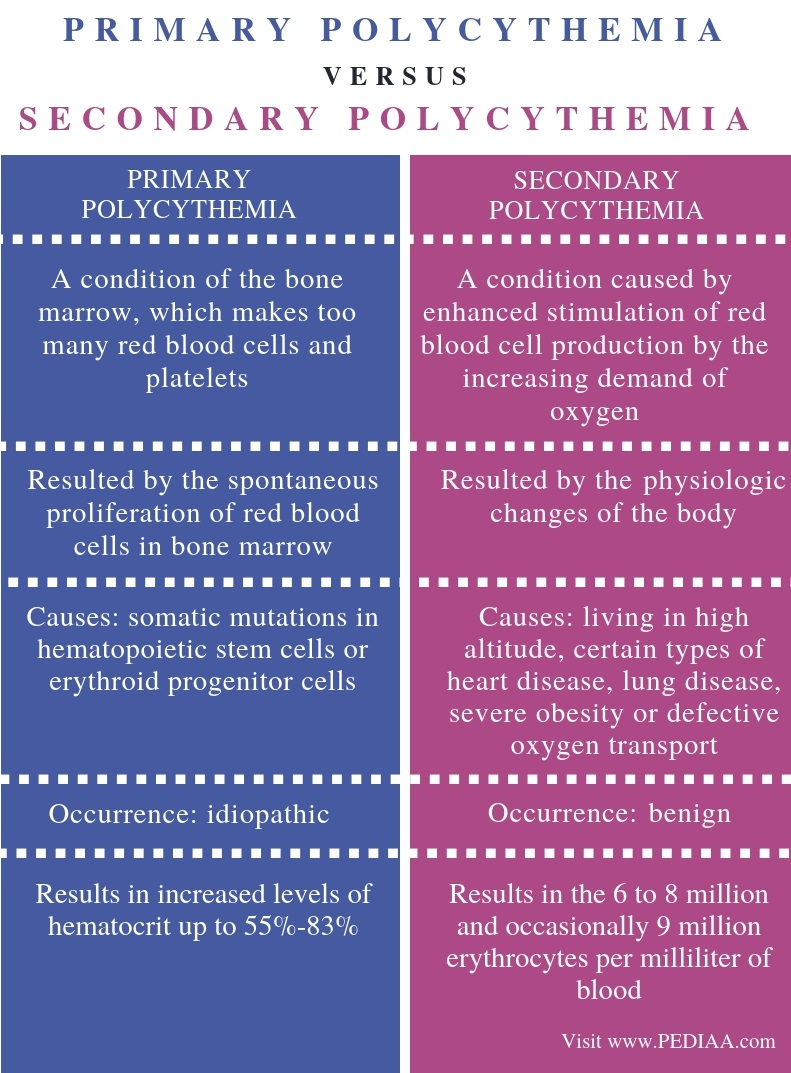 Difference-Between-Primary-and-Secondary-Polycythemia-Comparison-Summary
