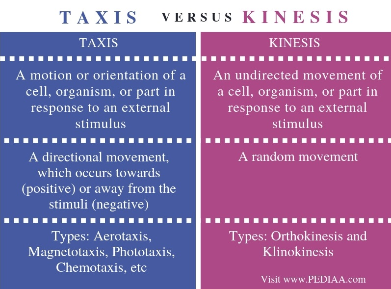 Difference Between Taxis and Kinesis - Comparison Summary