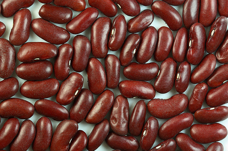 What is the Difference Between Beans and Legumes