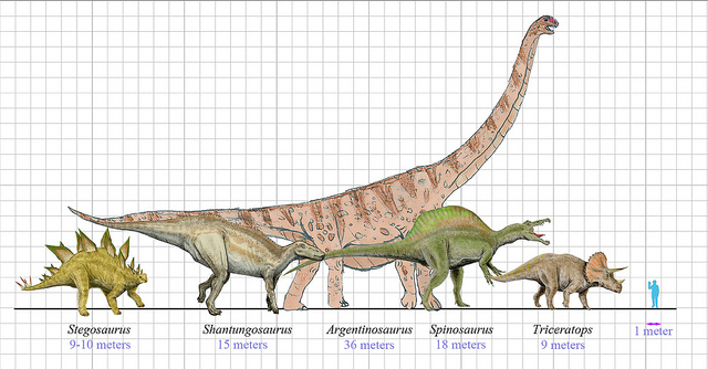 What is the Difference Between Dinosaurs and Reptiles