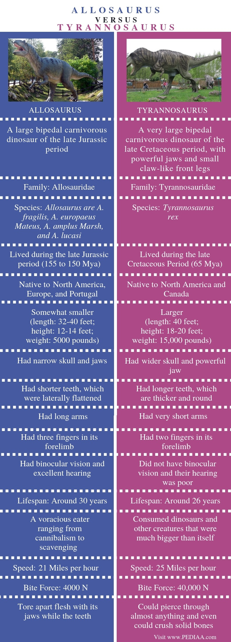 Difference Between Allosaurus and Tyrannosaurus - Comparison Summary