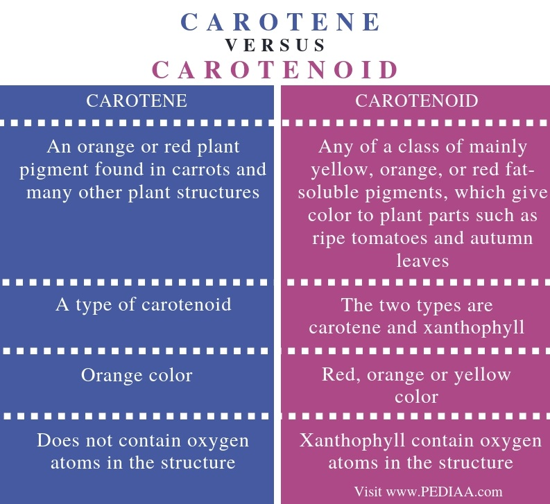 Difference Between Carotene and Carotenoid - Comparison Summary
