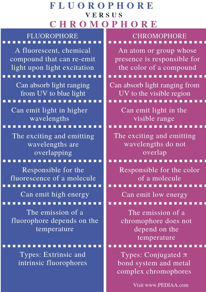 Difference Between Fluorophore and Chromophore - Comparison Summary