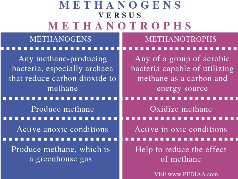 Difference Between Methanogens and Methanotrophs - Comparison Summary