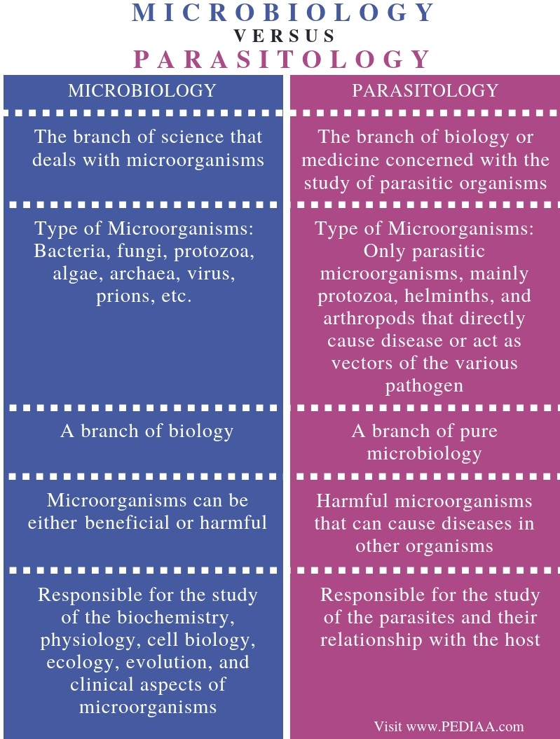 Difference Between Microbiology and Parasitology - Comparison Summary