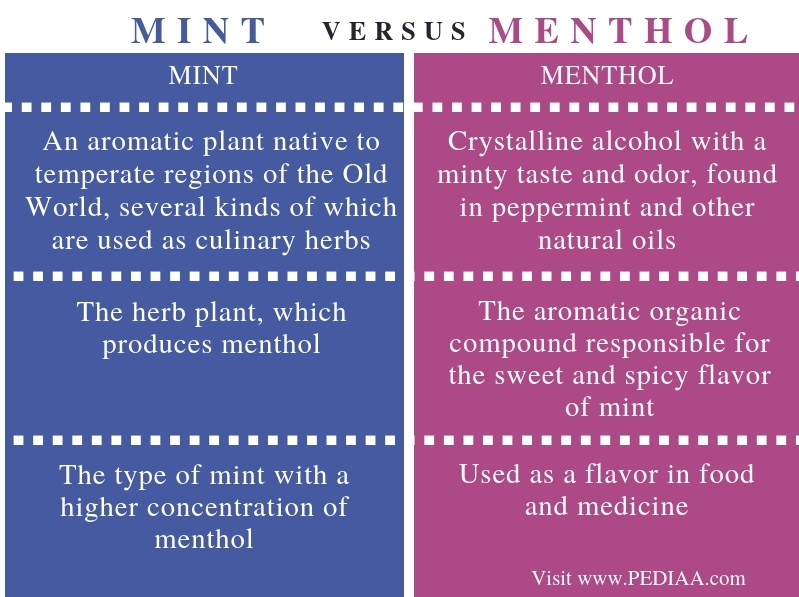 Difference Between Mint and Menthol - Comparison Summary