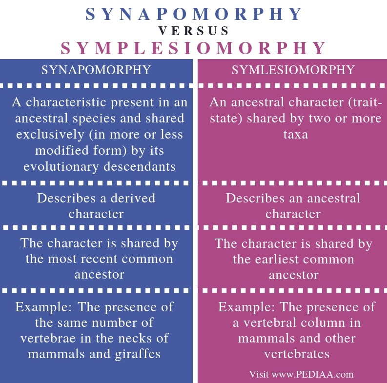 Difference Between Synapomorphy and Symplesiomorphy - Comparison Summary
