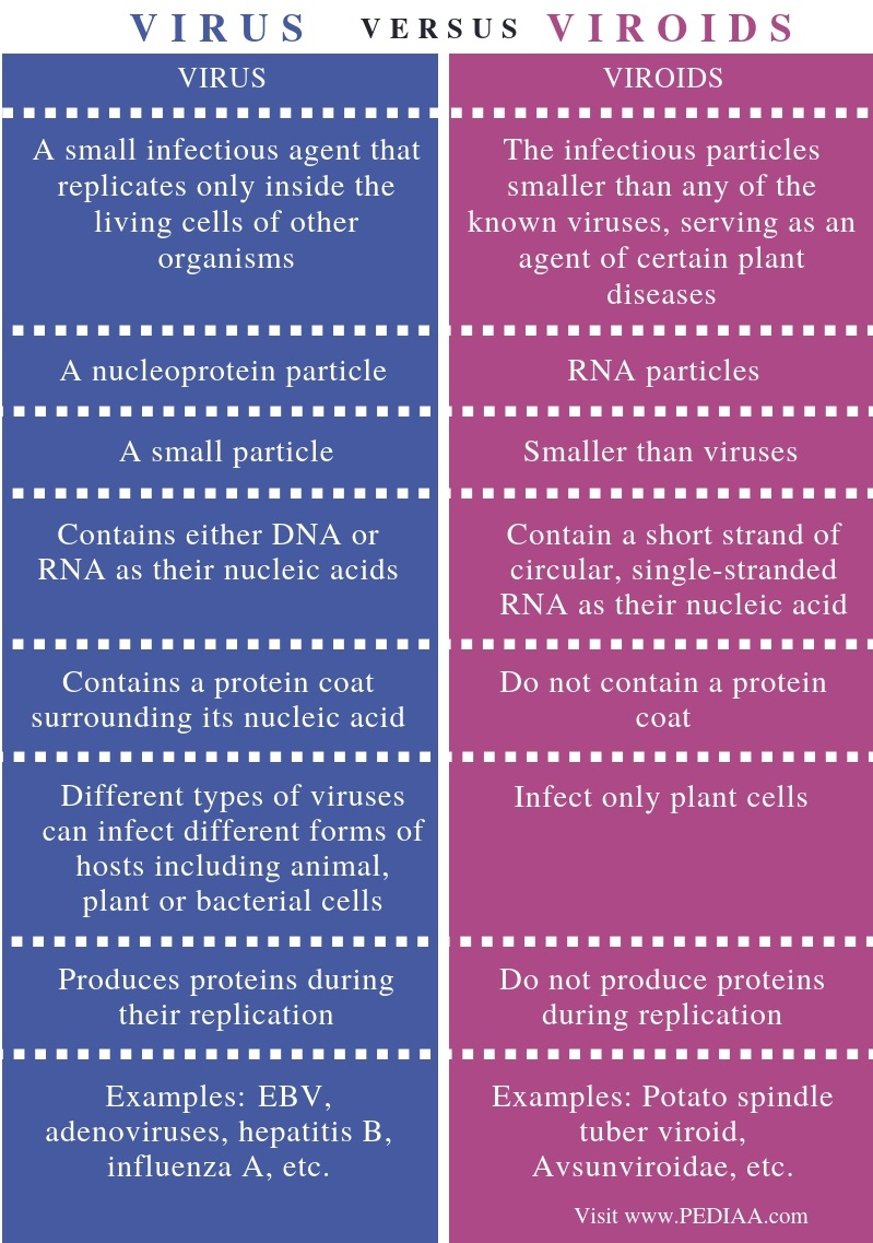 Difference Between Virus and Viroids - Comparison Summary (1)