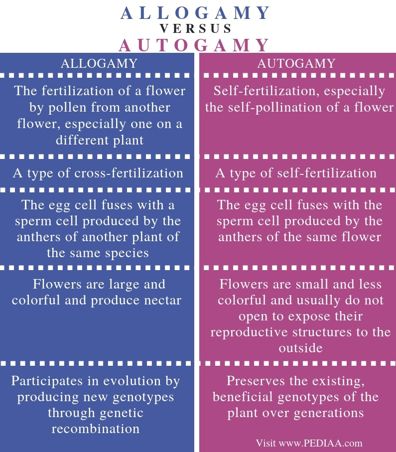 Difference Between Allogamy and Autogamy - Comparison Summary