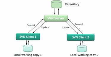 Difference Between CSV and SVN