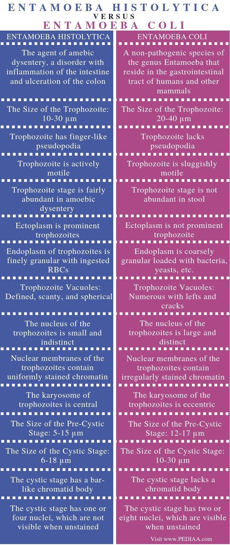 Difference Between Entamoeba Histolytica and Entamoeba Coli - Comparison Summary