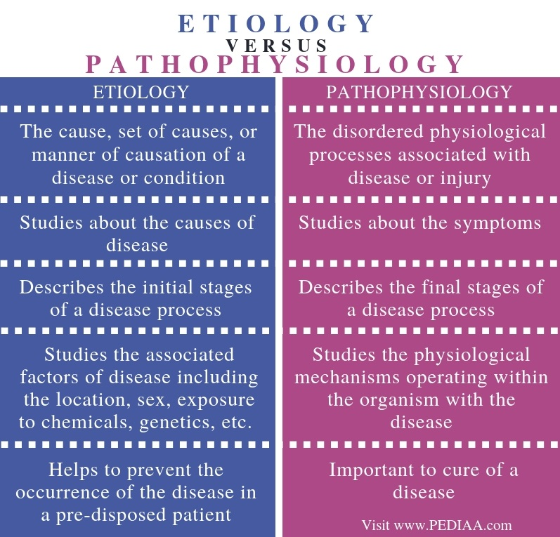 What Is The Difference Between A Part And Apart: What Is The Difference Between Etiology And