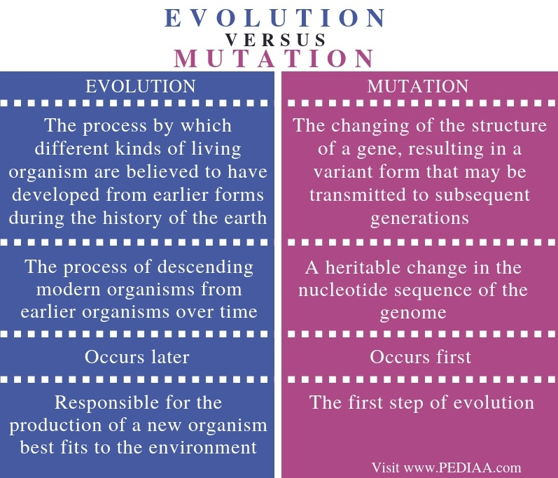 Difference Between Evolution and Mutation - Comparison Summary