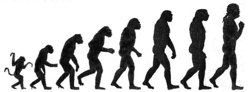 Darwinism vs Neo Darwinism