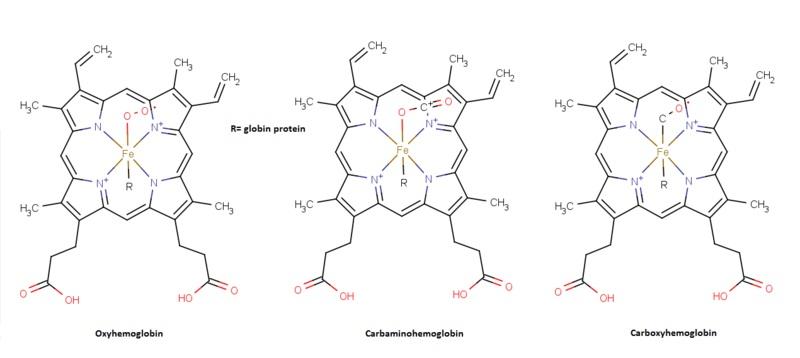 Iron vs Hemoglobin
