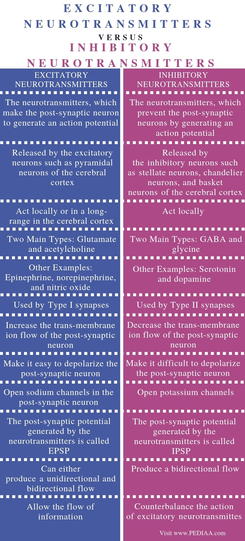 Difference Between Excitatory and Inhibitory Neurotransmitters - Comparison Summary