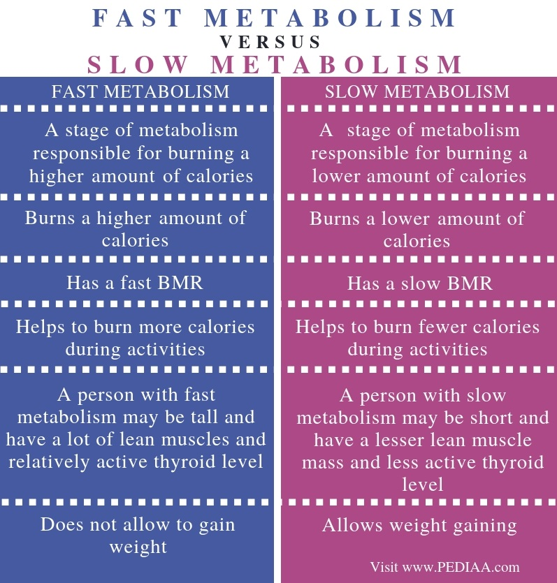 Difference Between Fast and Slow Metabolism - Comparison Summary