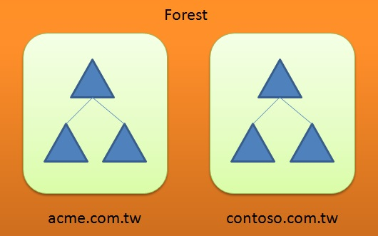 Difference Between Forest and Domain