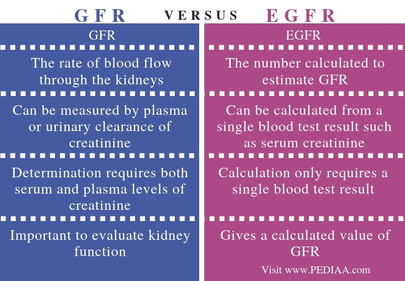 Difference Between GFR and eGFR - Comparison Summary