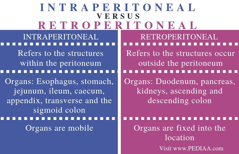 Difference Between Intraperitoneal and Retroperitoneal - Comparison Summary
