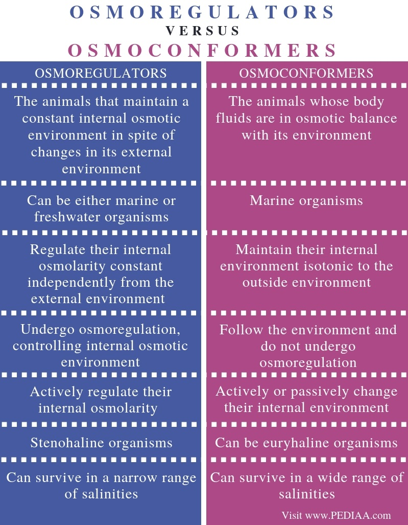 Difference Between Osmoregulators and Osmoconformers - Comparison Summary