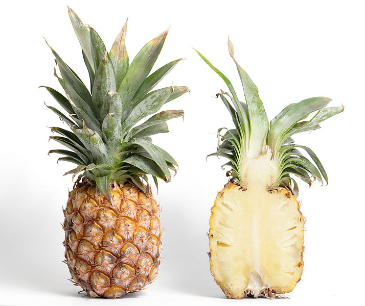 Difference Between True Fruit and False Fruit