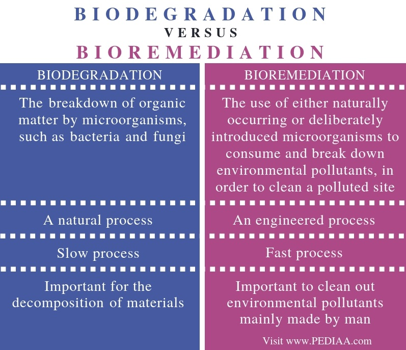 Difference Between Biodegradation and Bioremediation - Comparison Summary