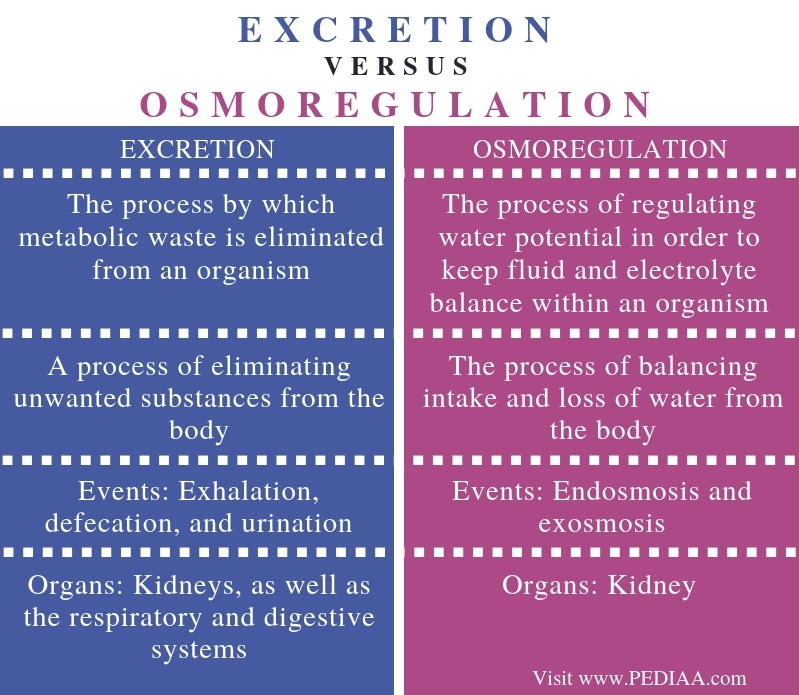Difference Between Excretion and Osmoregulation - Comparison Summary