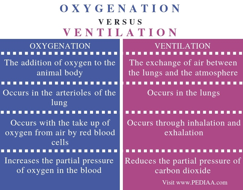 Difference Between Oxygenation and Ventilation - Comparison Summary