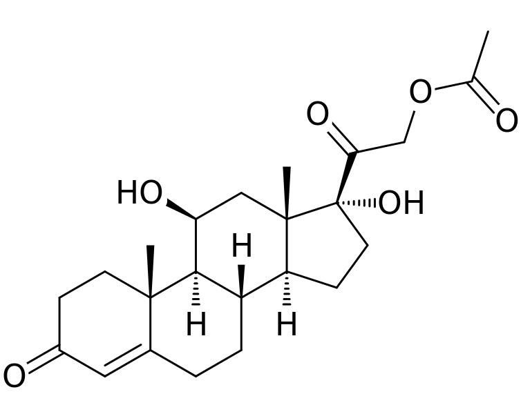 Glucocorticoids vs Corticosteroids
